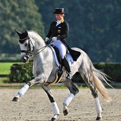 2018 – Belantis – Foal Sold