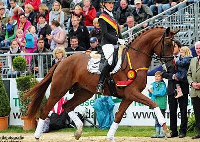 Fürst Fohlenhof trot 400
